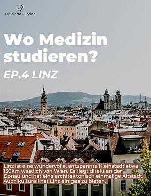 Linz Blogpost.png