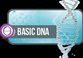 thetahealing-basic-dna.png