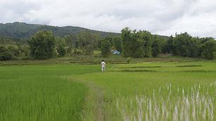 Laos_Stills_1.3.1.jpg