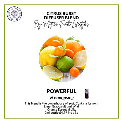 Citrus Burst Diffuser Blend by Mother Earth Lifestyles