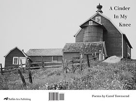 Carol Townsend's first chapbook presents 24 poems chronicling her life growing up on her father's farm in downstate New York in the 1950s and 60s.