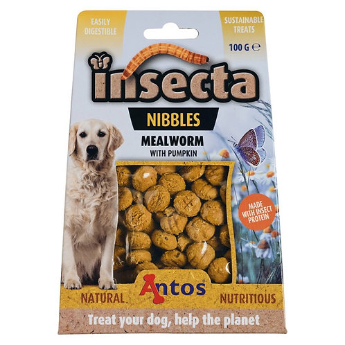 Insecta Nibbles – Mealworm with pumpkin