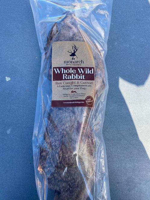 Whole wild rabbit