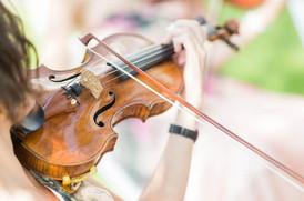 Geigenspielerin Trauung Hochzeit