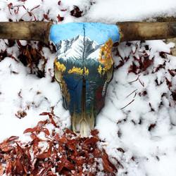 Snowy Fall Longhorn