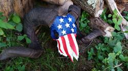 """""""American Pride"""" Ram"""