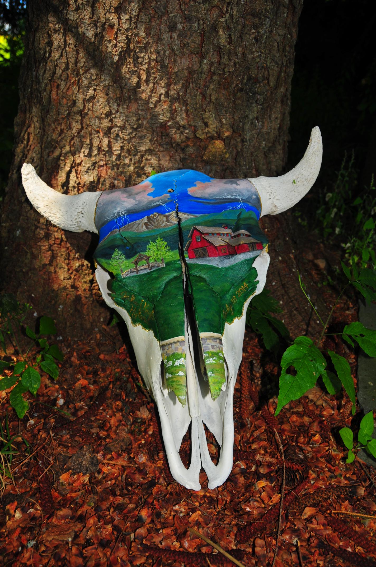 """""""Longs Peak"""" Bison"""