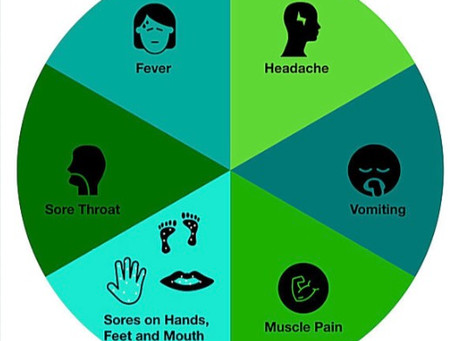 Hand, Foot and Mouth Disease is back. Here is what you need to know...