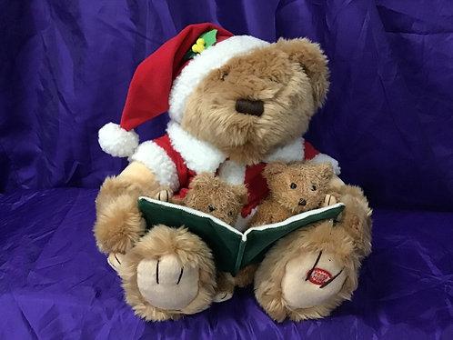 Story Telling Santa Bear.$10 Hire
