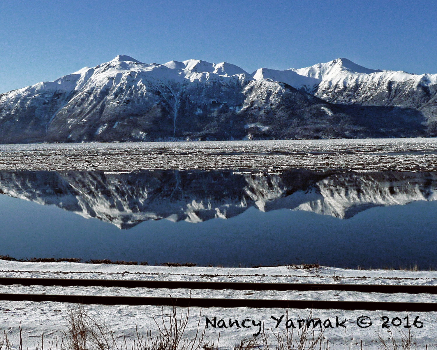 Winter Reflection-Nancy Yarmak