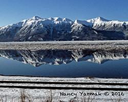 Winter Reflection-Nancy Yarmak