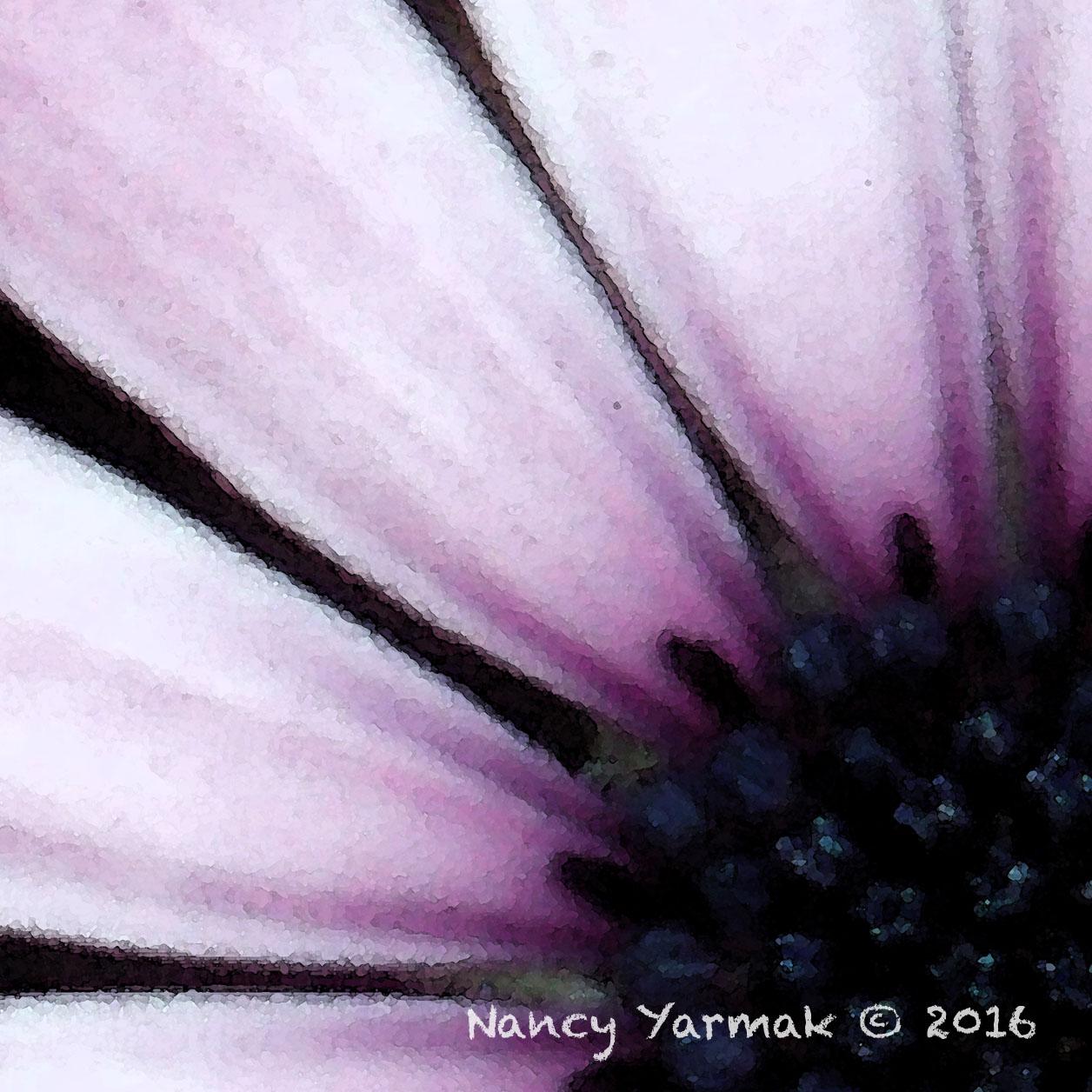 Lavender Sunrise-Nancy Yarmak