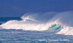 Blue Waves-Nancy Yarmak