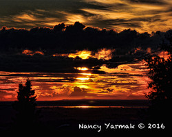 Drama-Nancy Yarmak
