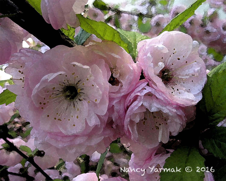 For You-Nancy Yarmak