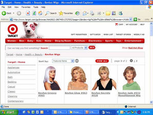 Target Website Program 2004
