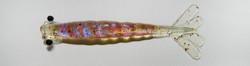 Camarão Flexa Holográfico Cor 33