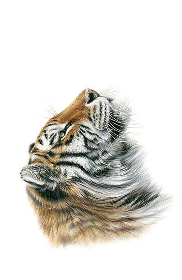 Tiger Side - Phone Case