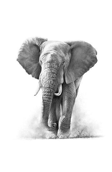 Arising Elephant - Phone Case
