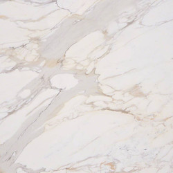 Calcutta Gold Marble
