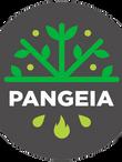 logo pangeia (1).png