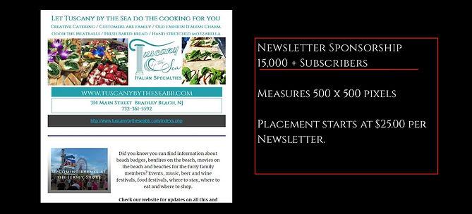 newsletter promo 1.jpg