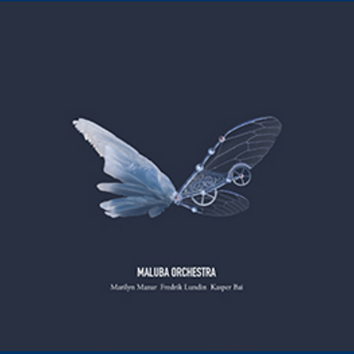 CD // Maluba Orchestra