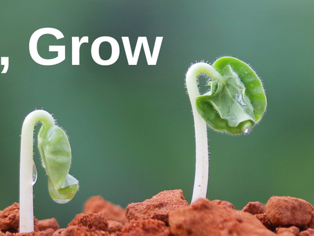 Connect, Serve and Grow for 2.10.2020