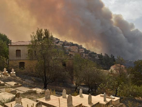 Wildfire in Algeria kills 42 including 25 soldiers
