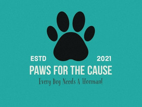 """""""Paws for thecause"""" : Raise the woof for a finer tomorrow"""