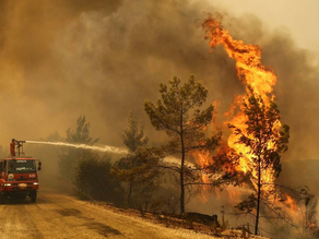 Forest Fire shatters Turkey: Kills 6 people and diminishes residences