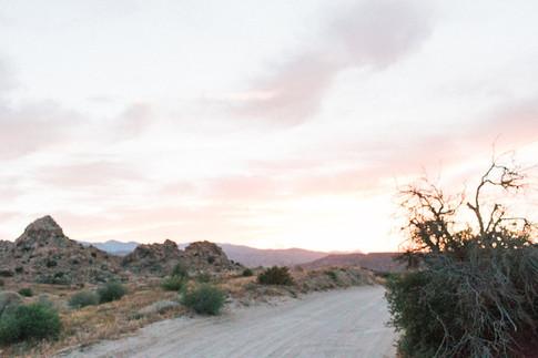 Enamore_Desert_15_2527.jpg
