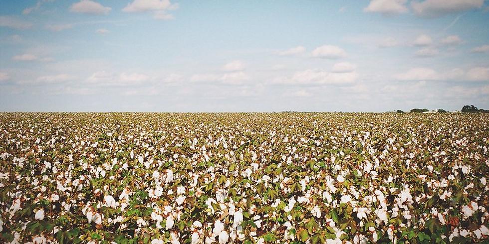 Photo Field Trip: Tiny Texas Towns