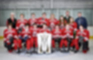 youth ice hockey team Holland Photo