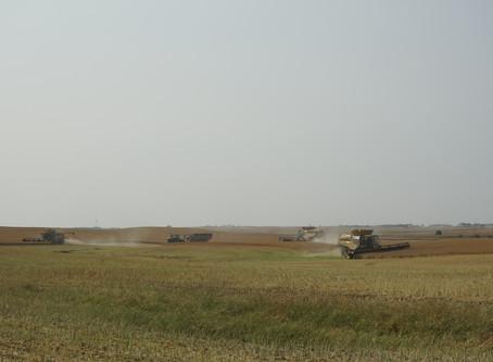 Harvest in Saskatchewan - 4K Aerial Film