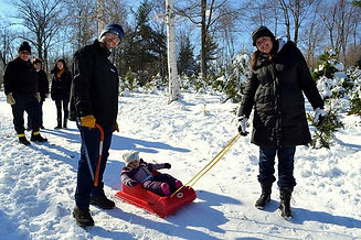 Evergreen Farm family Christmas sled