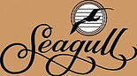 Seagull Acoustic Guitars Oklahoma City Music Store Rawson OKC Dealer