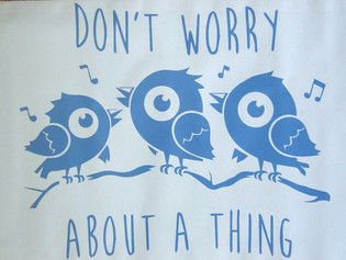 """""""Don't Worry About a Thing"""""""