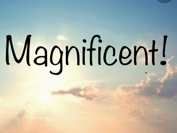 """""""Magnificent Inside and Out!"""""""