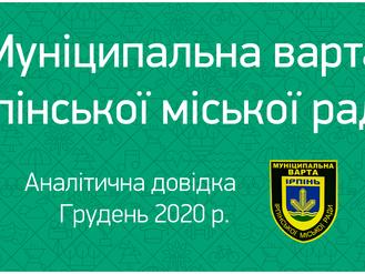 Грудень 2020. Аналітична довідка