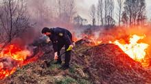 Муніципальна варта загасила пожежу, що сталась внаслідок чергового підпалу сухої трави  в Ірпені