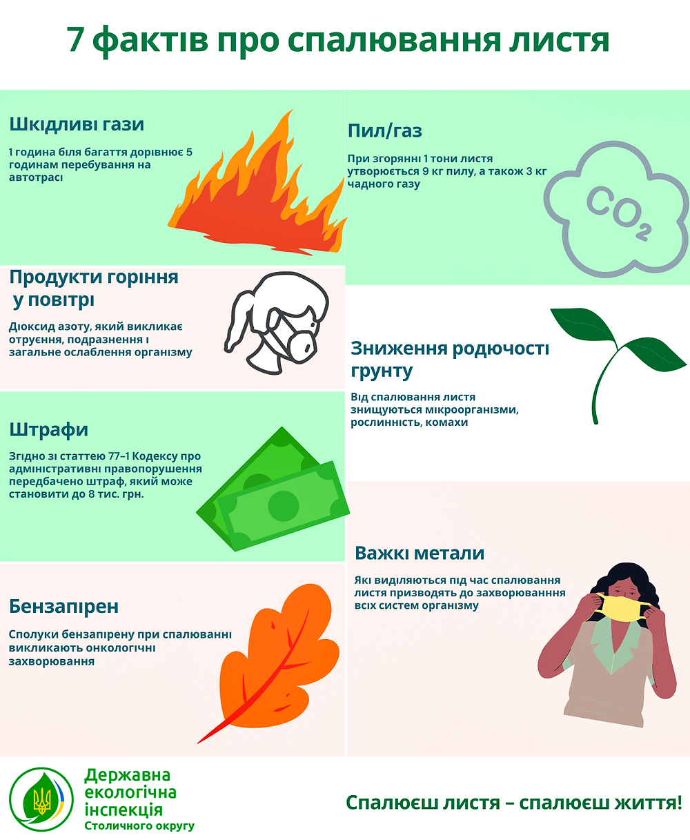 Факти про спалювання листя