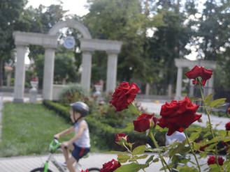 Міський парк відпочинку ім. Володимира Правика