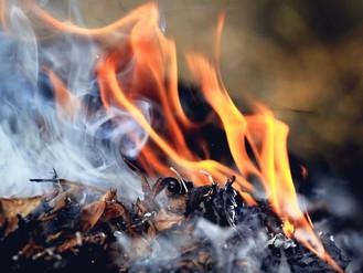 Не паліть опале листя! Ви труїте себе та оточуючих