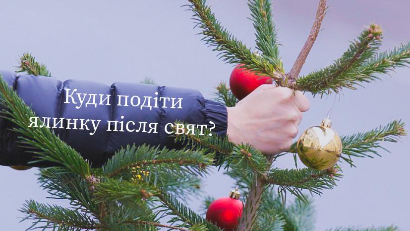 Куди в Ірпені здати новорічні ялинки