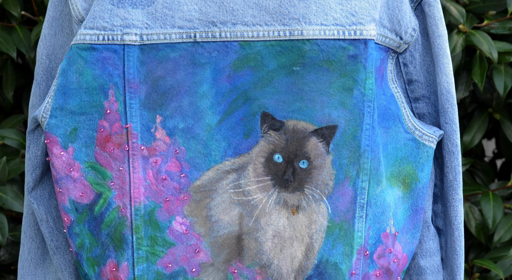 denim-cat-1.jpg