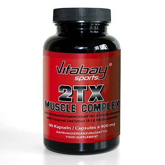 2Tx - Starker Muskelkomplex
