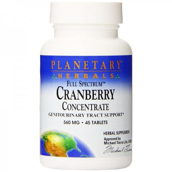 Cranberry Konzentrat Full Spectrum™ - 560 mg - 45 Tab