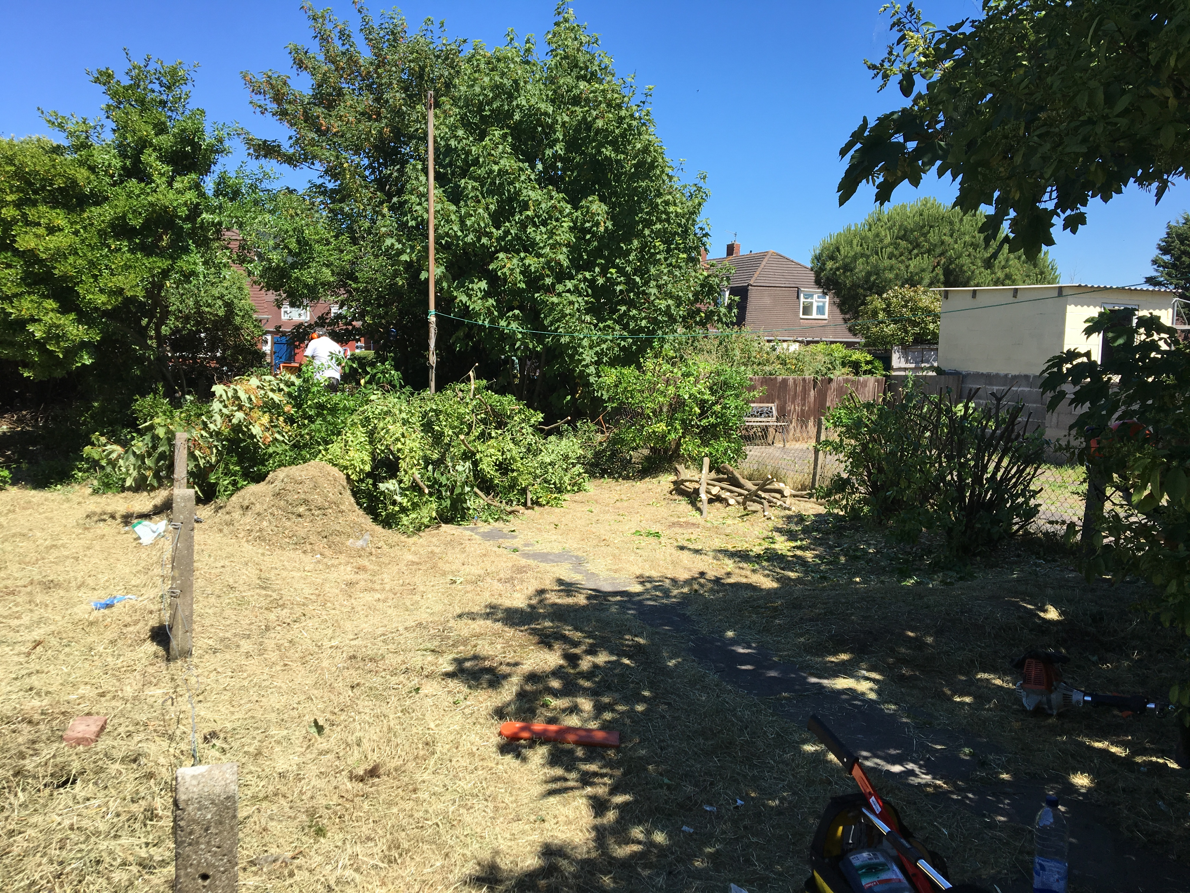 during garden clearance