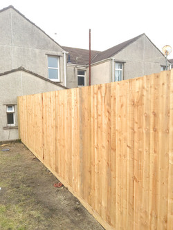 Featheredge fence By Helping AND Briton